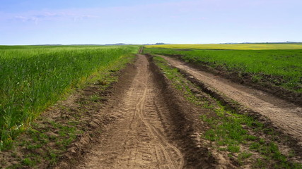 road, field and blue sky