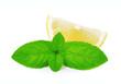 Slice of lemon with mint