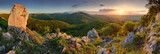 Green nature panorama with sun - 52923304