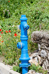 fire hydrant in nature