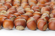 Unbroken hazelnuts on white surface