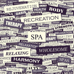 SPA. Word cloud concept illustration.