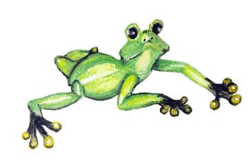 The green amphibian