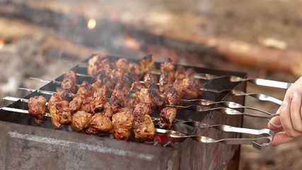 resh kebab prepares on the fire outdoors