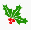Holly berry symbol - 52938303