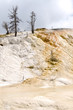 rocce e zolfo Mammoth Hot Springs in Yellowstone