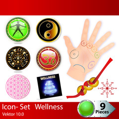 Icon - Set Wellness