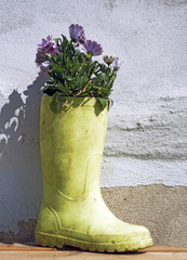 Boot and flowers