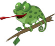 Big green Chameleon cartoon