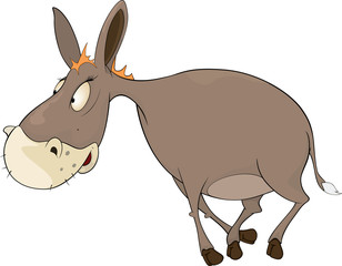 The little burro. Cartoon