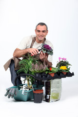 Gardener knelt by plants