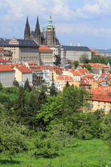 Spring Prague gothic Castle with green Trees, Czech Republic