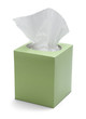 Tissue Box - 52955353