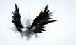 Leinwandbild Motiv Black wings