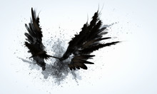 "Постер, картина, фотообои ""Black wings"""