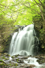 Waterfall of fresh green, Asamaootaki, Gunma, Japan