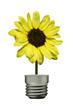 Yellow flower lamp