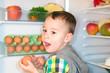 Kleiner Junge holt Eier aus dem Kühlschrank
