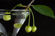 Unripe green cherry in martini glass on black