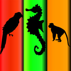 parrot and monkey and the sea horse vector