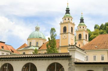 Ljubljana Cathedral St. Nicholas Church Slovenia Europe in old t