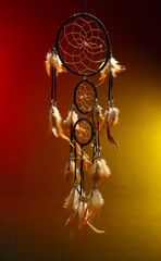 Beautiful dream catcher on color background