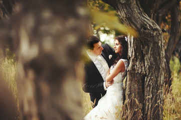 wedding couple in magic forest