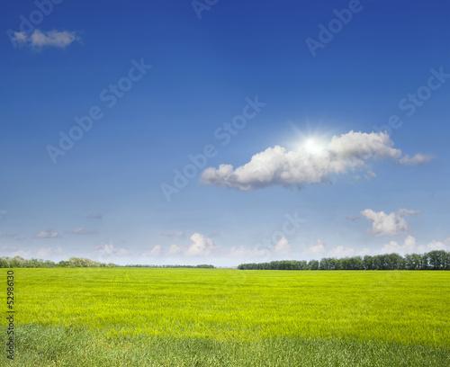 Fototapeten,feld,bauernhof,himmel,grün
