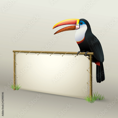 Toucan Sitting on Natural Advertising Panel Wood