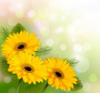 Nature background with yellow beautiful flowers. Vector