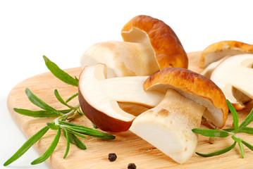 Fresh porcini mushrooms