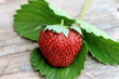 Fresh strawberry with green leaf on old wooden background
