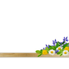 Plank with different colorful flowers and leaves