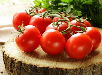 branch of ripe red tomato on a wooden stump