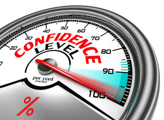 confidence level conceptual meter