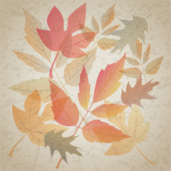 Autumn leafs on dirty grunge background
