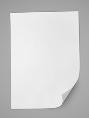 Blank sheet of white paper on gray background with clipping path