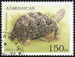 stamp printed in Azerbaijan shows a Leopard Tortoise