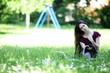 junge Frau auf Spielplatz