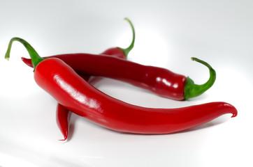 scharfe rote Peperoni auf weißem Hintergrund