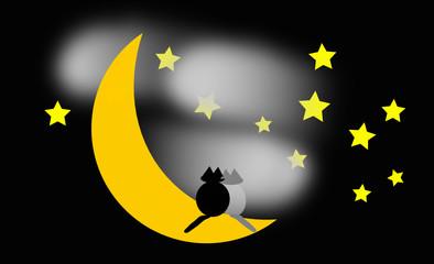 gatti su luna