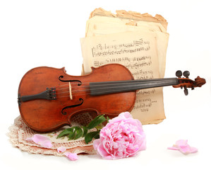 antique violin, note's and flower