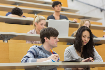 Working students sitting in a lecture hall