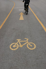 Bicycle lane in public park