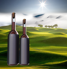 Wine bottle witn nice view for adv or others purpose use
