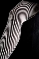 optical leg§