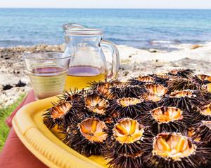 Sea urchins (ricci di mare) and wine