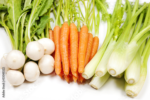 Turnip, carrot and celery from garden