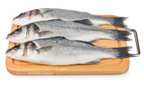 Sea Bass on wooden board isolated