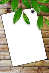 White paper on the wooden background and green leaves